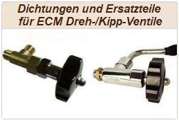 Reparaturen und Dichtungswechsel bei ECM Drehventilen und ECM Kippventilen.