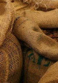 Kaffeesäcke für die Ernte von Kaffee Arabica.