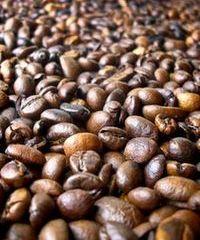 Kaffee Arabica bestellen in unserem Kaffee Shop.